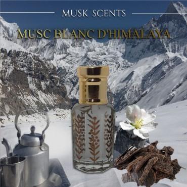 Musc blanc d'Himalaya