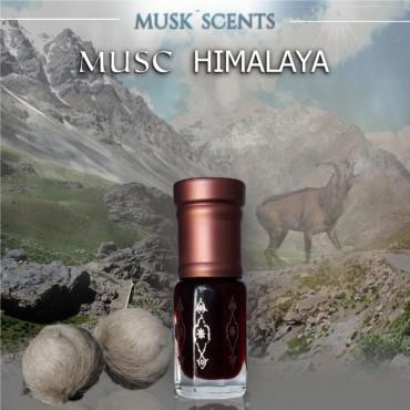 Musc Himalaya