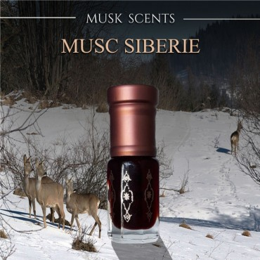 Musc de Sibérie