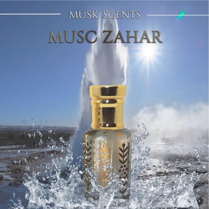 Musc Zahar