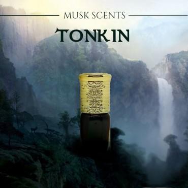 Musk Tonkin